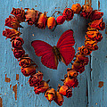 Red wing butterfly in heart Poster by Garry Gay