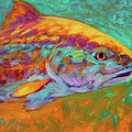 RedFish Portrait Poster by Mike Savlen
