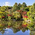 Reflection in Kyoyochi Pond in Autumn Ryoan-ji Kyoto Print by Colin and Linda McKie
