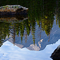 Reflection of Longs Peak Print by Tranquil Light  Photography