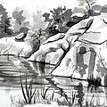 Reflections at Elephant Rocks State Park No I102 Print by Kip DeVore