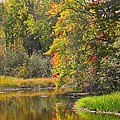 River in Fall Poster by Rhonda Humphreys