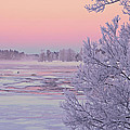 River in winter Print by Conny Sjostrom
