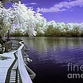 River Walk Print by Paul W Faust -  Impressions of Light