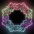 RNA interference viral suppressor Print by Science Photo Library