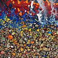 Rocks splattered with paint Poster by Amy Cicconi