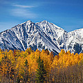 Rocky Mountain Autumn High Print by James BO  Insogna