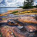 Rocky shore of Georgian Bay Print by Elena Elisseeva
