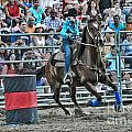 Rodeo Cowgirl Print by Gary Keesler