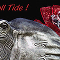 Roll Tide - 14 Time National Champions Poster by Kathy Clark