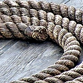 Rope Print by Janice Drew