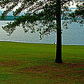 Ross Barnett Reservoir along Natchez Trace Parkway-MS Print by Ruth Hager