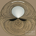 Round Wood Poster by Anne Gilbert