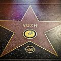 Rush Has a Star Poster by April Reppucci