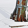 Rust and Snow Print by Cister Vengue