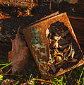 Rusted Can Of Leaves Print by Jack Zulli