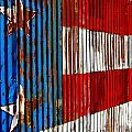 Rusted Flag Print by Francis Miller