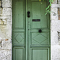 Rustic green door with vines Poster by Georgia Fowler