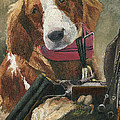 Rusty - A Hunting Dog Poster by Mary Ellen Anderson