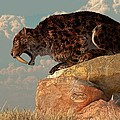 Saber-Tooth on a Rock Poster by Daniel Eskridge