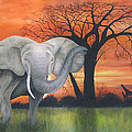 Safari Elephant Print by Cecilia  Brendel