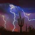 Saguaro Lightning Nature Fine Art Photograph Print by James BO  Insogna