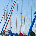 Sailboat Masts Print by Artist and Photographer Laura Wrede