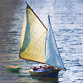 Sailboat Off Marthas Vineyard Massachusetts Print by Carol Leigh