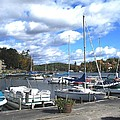 Sailboats on Sunapee Poster by Will Boutin Photos