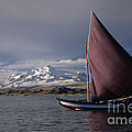 Sailing on Lake Titicaca Print by James Brunker