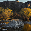 Salt River Fall Foliage Poster by Dave Dilli