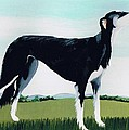 Saluki Cross Poster by Maggie Rowe