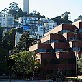 San Francisco Coit Tower At Levis Plaza 5D26188 Poster by Wingsdomain Art and Photography