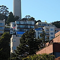 San Francisco Coit Tower At Levis Plaza 5D26192 Print by Wingsdomain Art and Photography