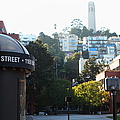 San Francisco Coit Tower At Levis Plaza 5D26212 Poster by Wingsdomain Art and Photography