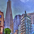 San Francisco Transamerica Pyramid and Columbus Tower view From North Beach Print by Juli Scalzi
