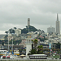 San Francisco View from Fishermans Wharf Print by Suzanne Gaff