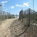 Sand fence at Southern Shores  Print by Cathy Lindsey