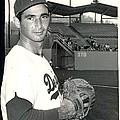 Sandy Koufax Photo Portrait Poster by Sanely Great