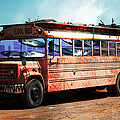 School Bus 5D24927 Print by Wingsdomain Art and Photography