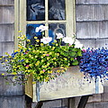 'SCONSET WINDOW BOX Print by Karol Wyckoff