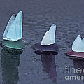 Sea Glass Flotilla Poster by Barbara McMahon