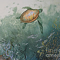 Sea Turtle Print by Nancy Gorr