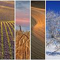 Seasons of the Palouse Print by Latah Trail Foundation