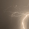 Sepia Tropical Thunderstorm Night  Poster by James BO  Insogna