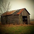 Shed In Pasture Print by Michael L Kimble
