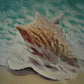 Shell Two - 2 in a series of 3 Print by Don Young