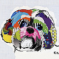 Shih Tzu  by Michel  Keck