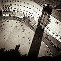 Siena from Above Print by Dave Bowman