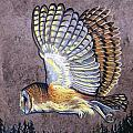 Silent Night Owl Print by Anne Shoemaker-Magdaleno